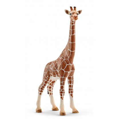 Schlecih Giraffe Female