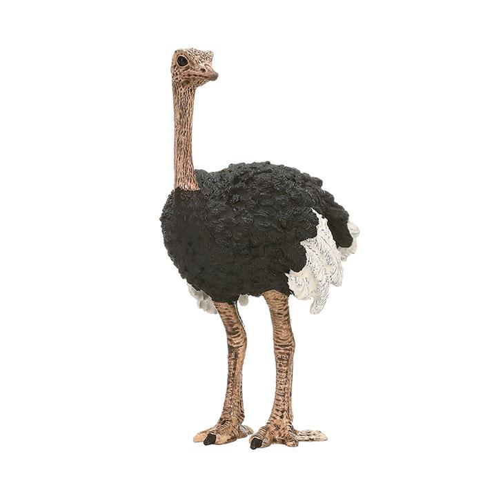 Schleich Ostrich